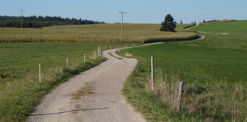 Der ganzheitliche Weg